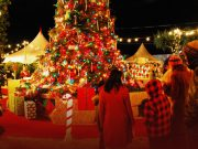 Canada: Christmas celebrations in Jeopardy if Canadians don't check on socialization