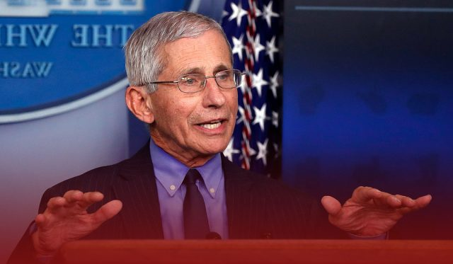 Covid Fauci warns of 'surge in cases' post Thanksgiving